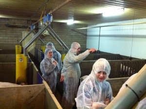 Fancom BV staff visiting a pig farm participating in EU-PLF.
